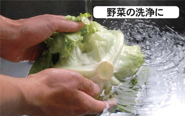 野菜の洗浄に